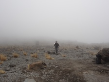 Patty nach ihrer ersten Begegnung mit den Kilimanjaro-Ratten