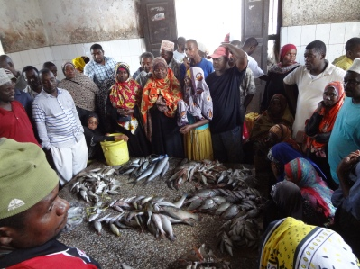 Fischauktion
