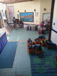 Sinai Divers Backpackers